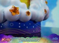 Warp Star Kirby F4F Exclusive (58)