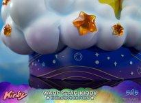 Warp Star Kirby F4F Exclusive (59)