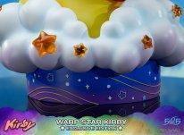 Warp Star Kirby F4F Exclusive (60)
