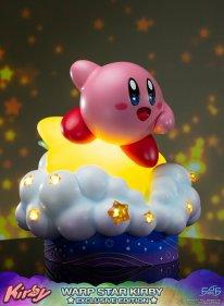Warp Star Kirby F4F Exclusive (64)