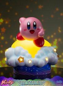 Warp Star Kirby F4F Exclusive (65)