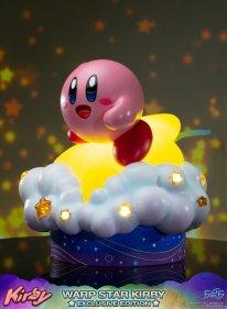 Warp Star Kirby F4F Exclusive (66)