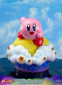 Warp Star Kirby F4F Exclusive (67)