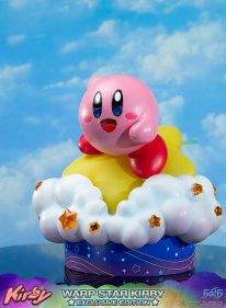 Warp Star Kirby F4F Exclusive (68)