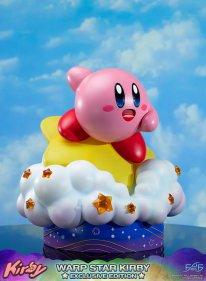 Warp Star Kirby F4F Exclusive (69)