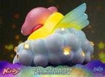 Warp Star Kirby F4F Exclusive (9)