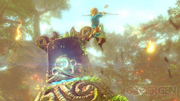 Wii U The Legend of Zelda 10.05.2014  (1)