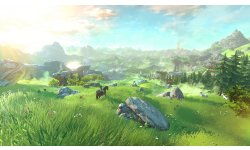 Wii U The Legend of Zelda 10.05.2014  (2)