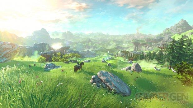 Wii U The Legend of Zelda 10.05.2014  (2)