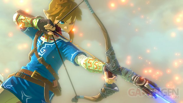 Wii U The Legend of Zelda 10.05.2014  (3)