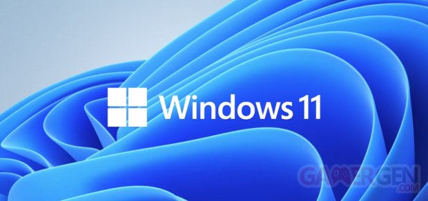 Windows 11 logo head banner