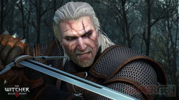 Witcher 3 Wild Hunt Potion Geralt