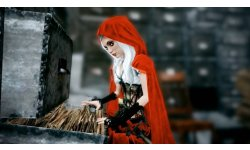 Woolfe The red Hood Diaries   vignette