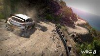 WRC 8 24 01 2018 screenshot 2