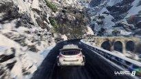 WRC 8 24 01 2018 screenshot 5