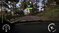 WRC 9   Screenshots   0003 1