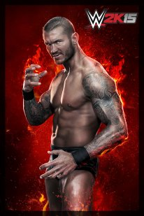 WWE 2K15 05 02 2015 One More Match art (5)