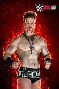WWE 2K15 05 02 2015 One More Match art (6)