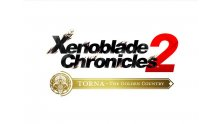 Xenoblade-Chronicles-2-Torna-The-Golden-Country-13-12-06-2018