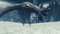 Xenoblade Chronicles X (10)