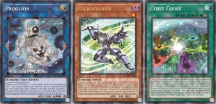 Yu Gi Oh Legacy of the Duelist Link Evolution cartes offertes